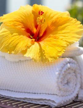 Clean Cotton Scent